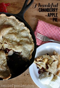 Thankful Cranberry Apple Pie in an Iron Skillet