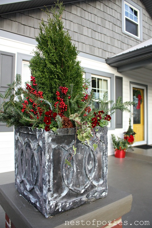 Diy Tips On Winter Flower Containers Nest Of Posies