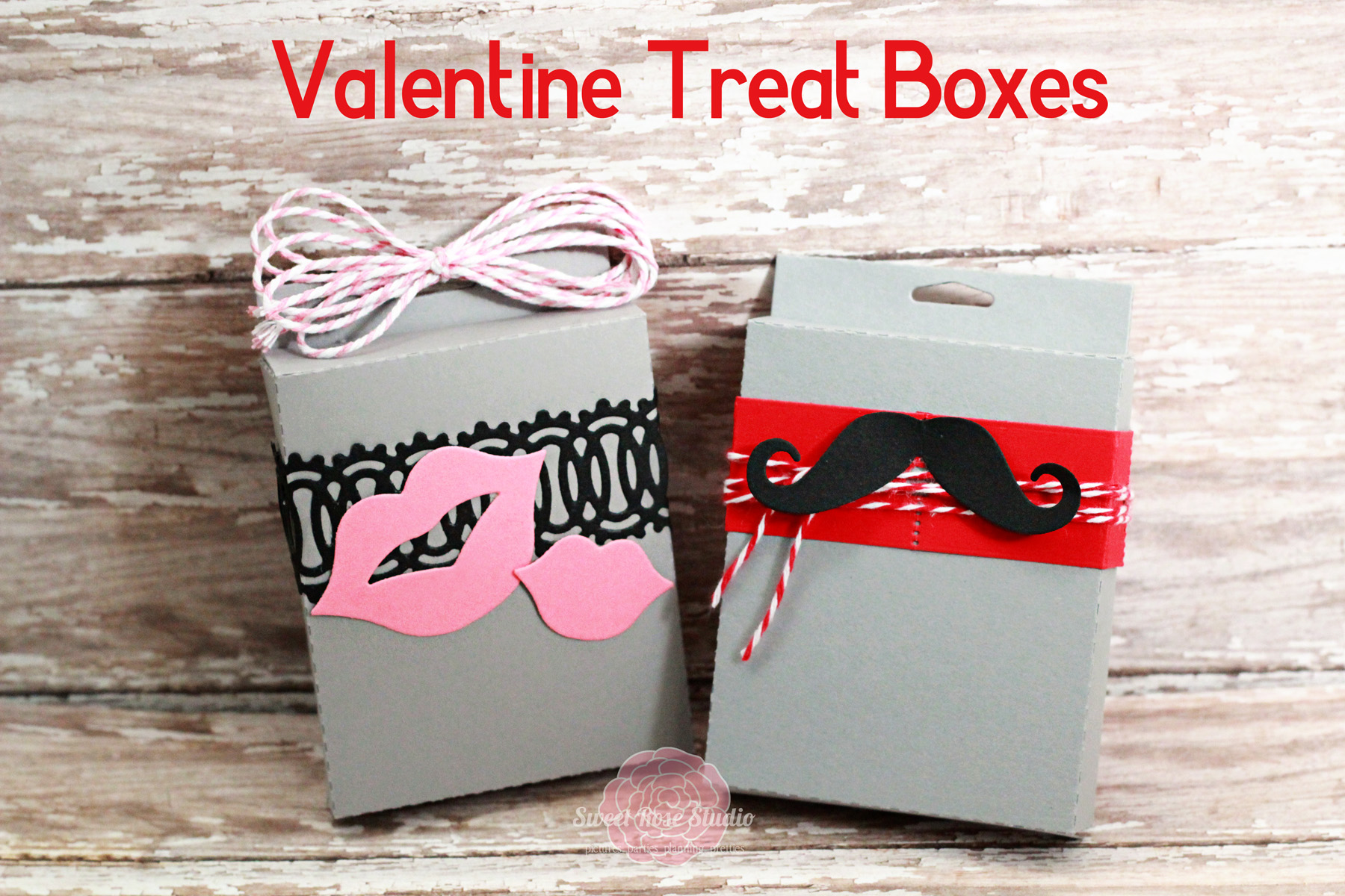 33 Homemade Valentines Treat Bag Ideas Nest Of Posies