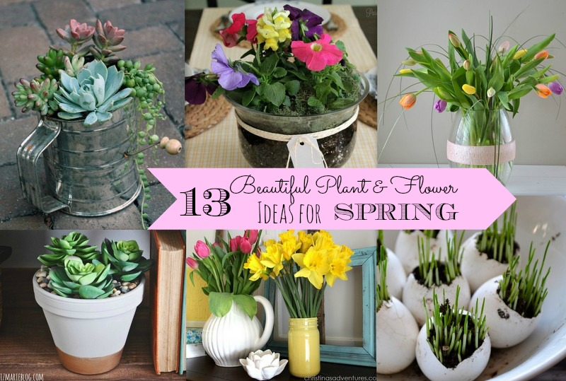 beautiful design flower planter ideas. 13 Plant  Flower Ideas for Spring via Nest of Posies Beautiful Flowers