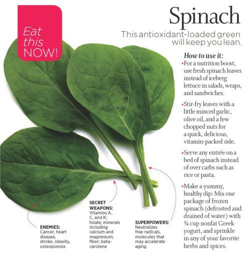 Eat Your Spinach!  This antioxidant will keep you lean via Nest of Posies