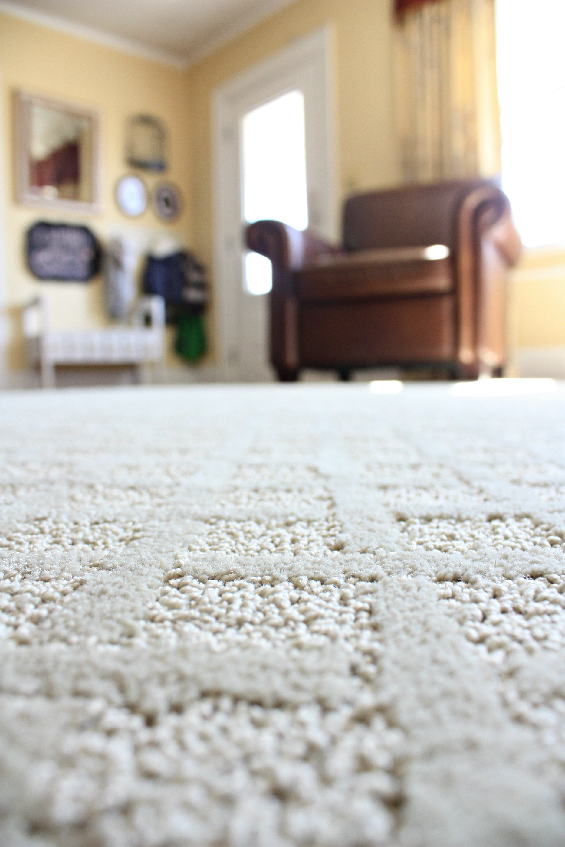 Our new Mohawk SmartStrand Rug