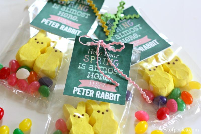Peter Rabbit Treat Bag #Printables via @NestofPosies