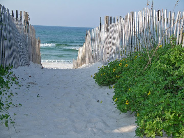 Our Vacation To Seaside Florida Nest Of Posies
