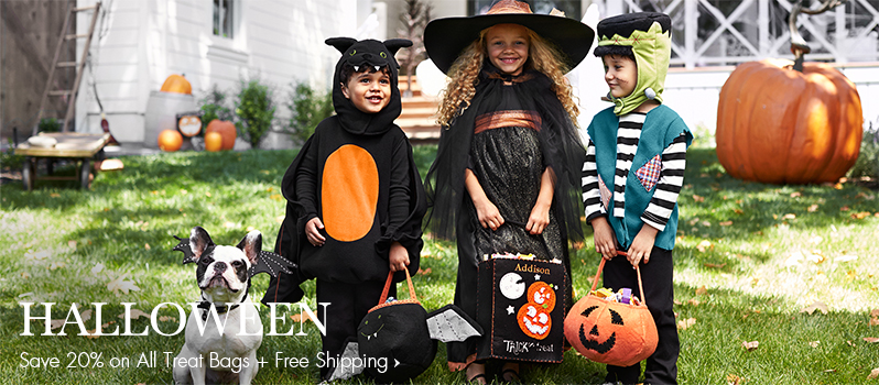 Pottery Barn Kids Costume Ideas!  sc 1 st  Nest of Posies & The Beehive and the Bee Kids Halloween Costume Ideas