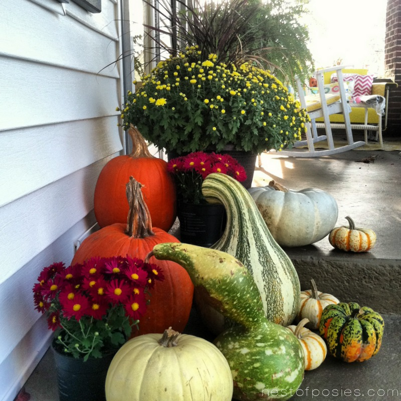 Pumpkins on the front porch via Nest of Posies