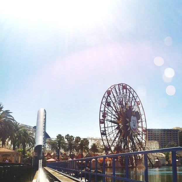 California Screamin' Roller Coaster Disneyland