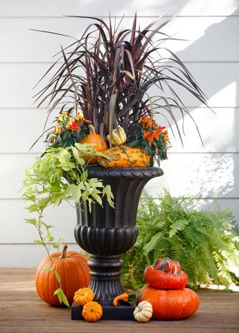Fall Container Garden Ideas
