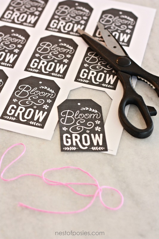 Bloom and Grow FREE Chalkboard Printable Gift Tags