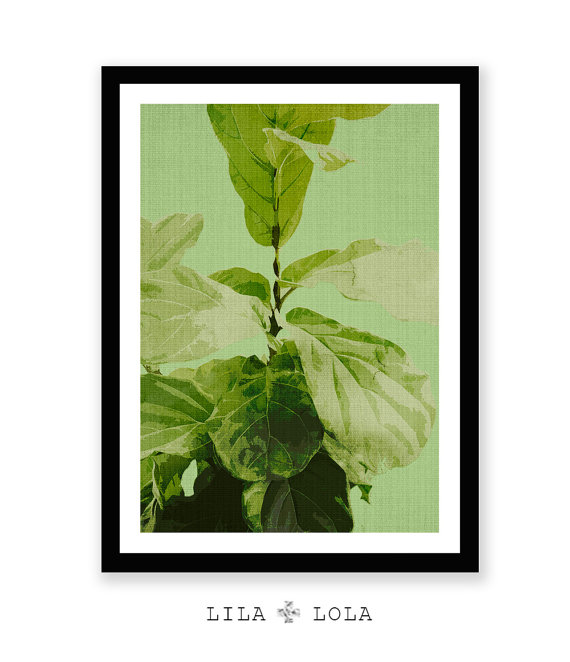 Fiddle Leaf Fig Printable Download