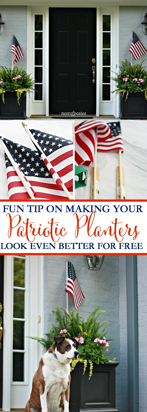 Patriotic Planters Decorating Tip